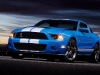 2010_ford_shelby_gt500_3