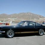 Weez's 1966 GT350H